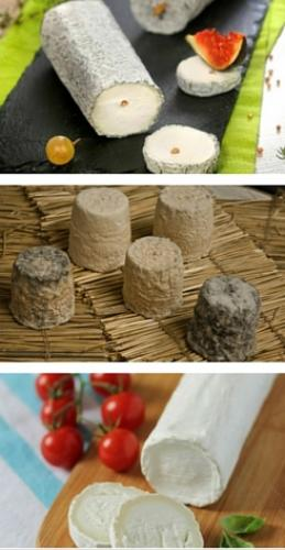 local-produce_cheese